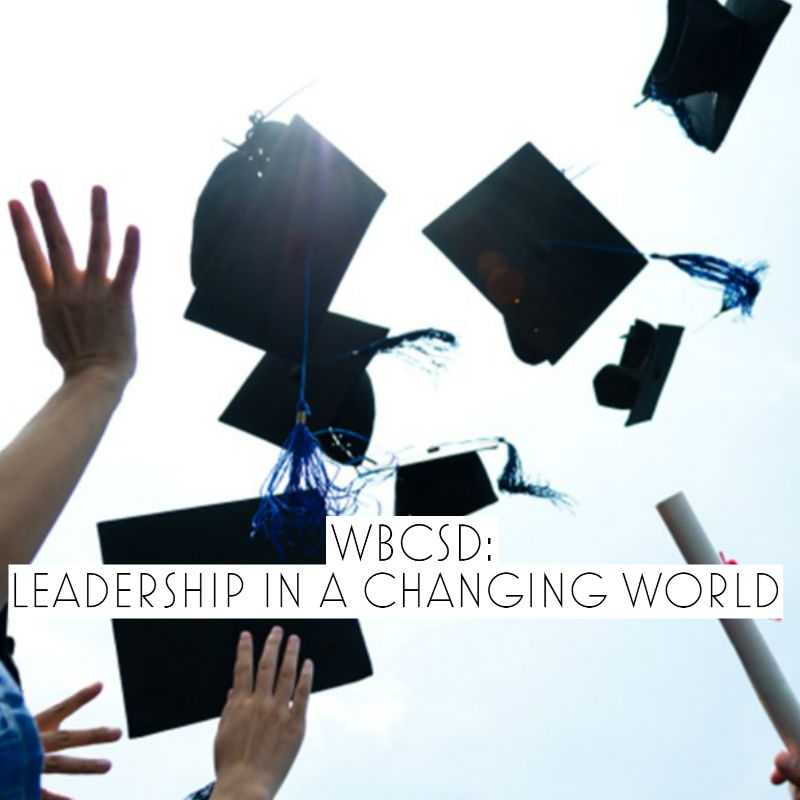 michael mander wbcsd leadership in a changing world